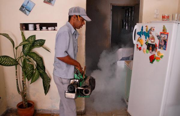 Combaten en Ciego de Avila presencia agresiva del Aedes Aegypti